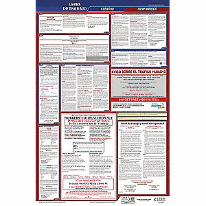 Labor Law Poster,Fed/STA,NM,SP,26inH,5yr
