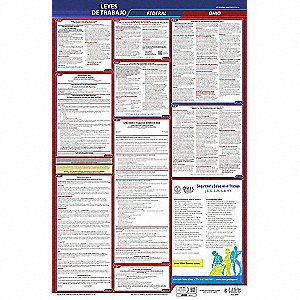 Labor Law Poster, OH Federal and State Labor Law, Spanish, 1 yr.