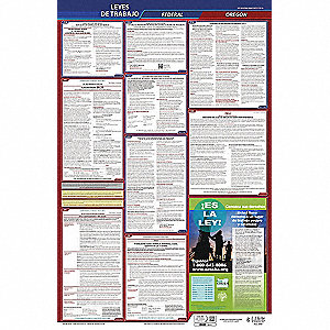 Labor Law Poster, OR Federal and State Labor Law, Spanish, 3 yr.