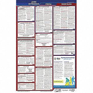 Labor Law Poster,Fed/STA,RI,SP,26inH,5yr