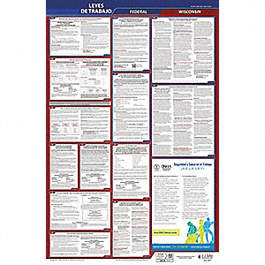 Labor Law Poster,Fed/STA,WI,SP,26inH,1yr