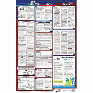 Labor Law Poster, MA Federal and State Labor Law, Spanish, 1 yr.
