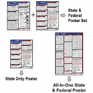 Labor Law Poster,Fed/STA,NJ,SP,40Wx26inH