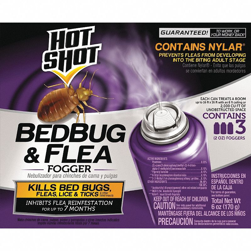 Insect Killer,  Aerosol,  2 oz,  Indoor Only,  DEET-Free DEET Concentration
