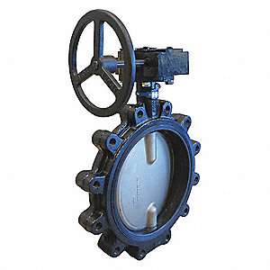 "Lug-Style Butterfly Valve, Ductile Iron, 200 psi, 10"" Pipe Size"