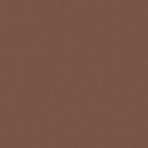 Interior Paint,Congo Brown,1 gal.