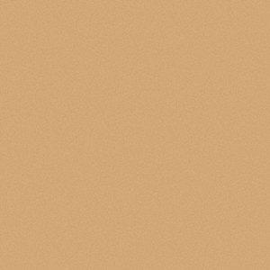 Semi Gloss Exterior Paint Latex Base Crisp Croissant 1 Gal