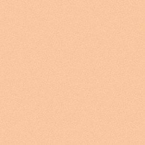 Interior Paint,Nude Rose,Flat,1 gal.