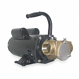 18.6/9.3 Amps 1-1/2 HP Flexible Impeller Pump, 39.8 psi, 1-1/2 NPT