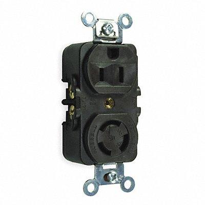 3D995 - Receptacle Duplex 5-15R 125/250V