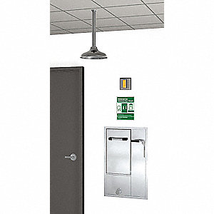 Shower with Eye/Face Wash, Recessed Mount, Stainless Steel, Assembled