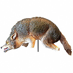 Coyote, 3-D, Used For Geese, Ducks, Rabbits, Skunks, Rodents.