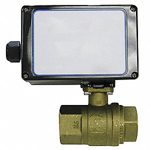 "Brass Electronic Actuated Ball Valve, 1-1/4"" Pipe Size, 115VAC Voltage"