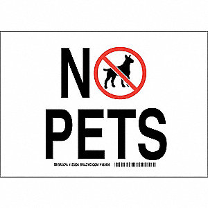 "Pets, No Header, Polyester, 7"" x 10"", Adhesive Surface, Not Retroreflective"