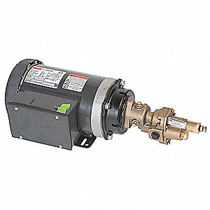 Rotary Pump,1Phase,125psi,1-1/2HP