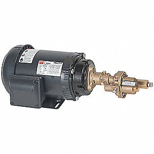 Rotary Gear Pump, 125 psi, Bronze, 1 HP, 3 Phase