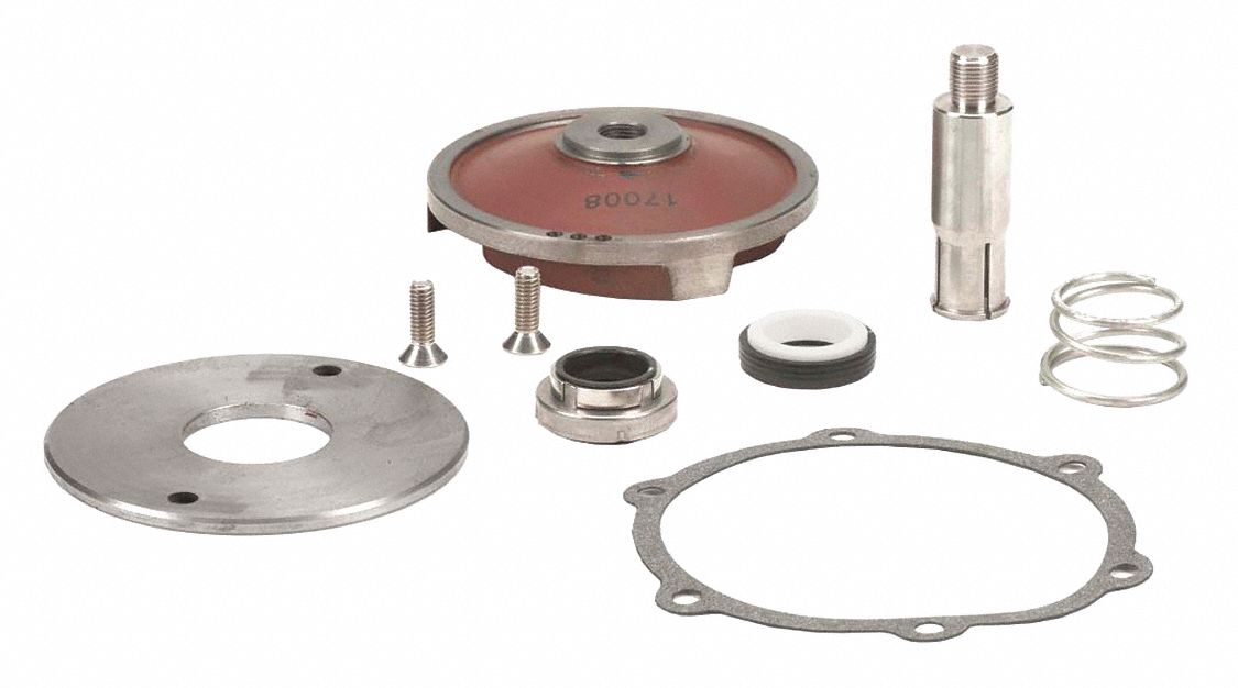 Repair Kit for Cast Iron Pump,  Fits Brand Banjo