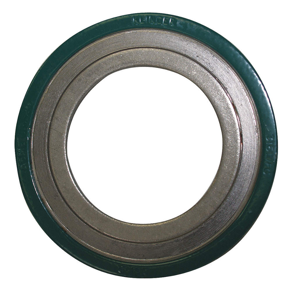 304SS and Flexible Graphite Spiral Wound Metal Gasket, 8-3/4