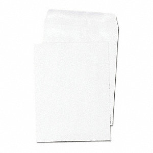 "Paper Catalog Envelope, 9"" Height, 6"" Width"