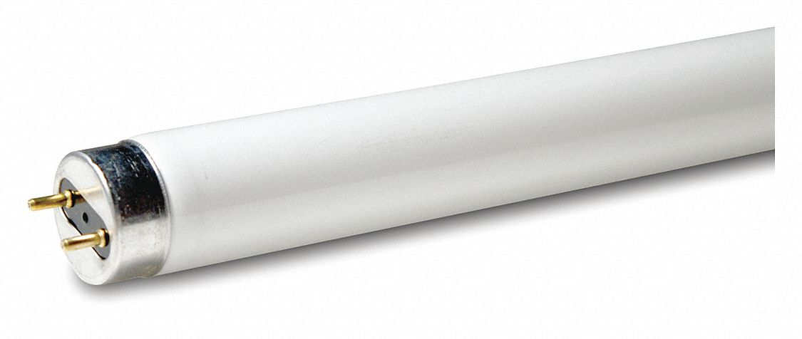 Linear Fluorescent Bulb,  T8,  Medium Bi-Pin (G13),  Lumens 3,000 lm,  4,100 K Color Temperature