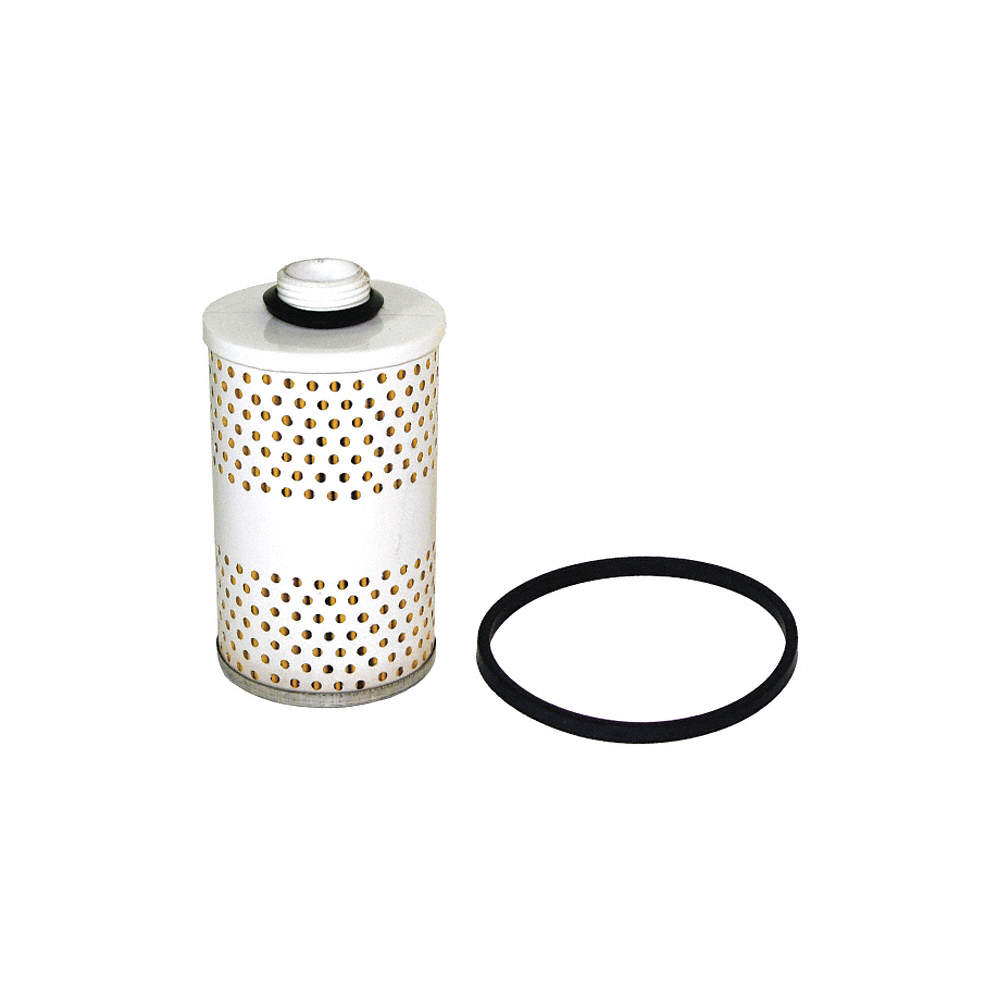 FILL-RITE Fuel Filter, Replacement, For Use With Fuel Transfer Pumps -  48YA77|1200R9146 - GraingerGrainger