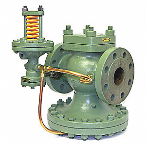 "ED Series 11-3/4""L Cast Iron Pressure Regulator, 10 to 100 psi"