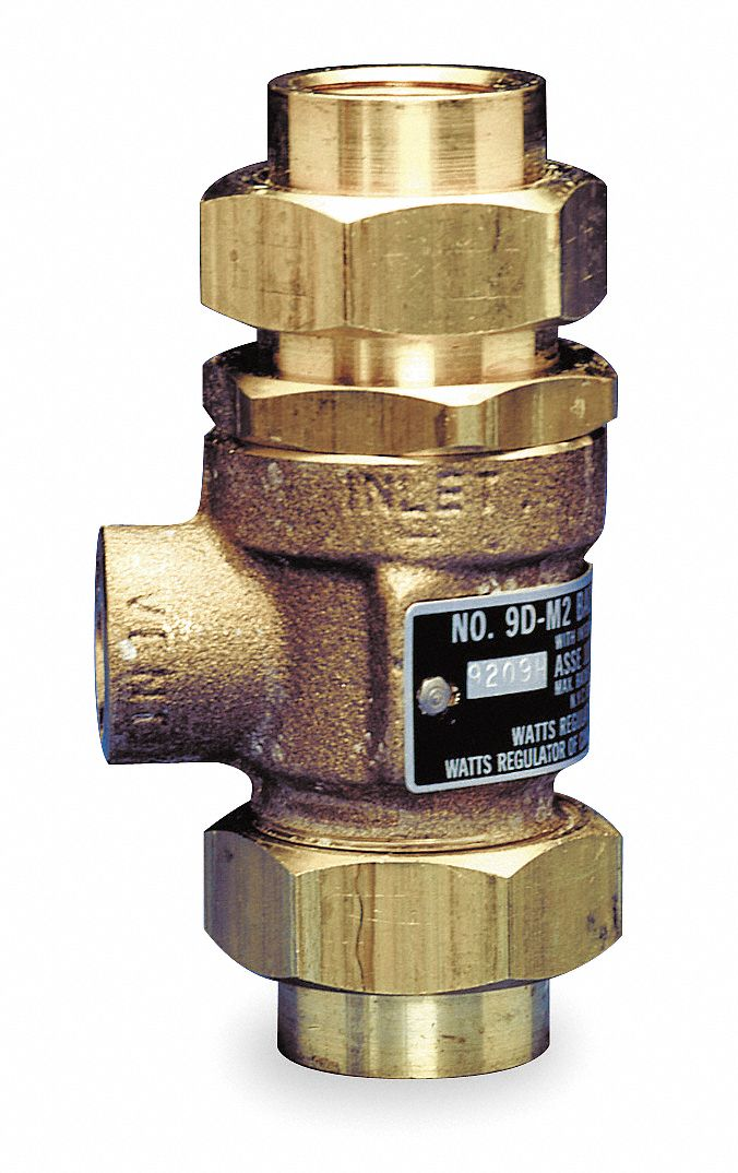 Check Valve,  3/4 in,  Dual with Vent,  Inline,  Bronze,  FNPT x FNPT