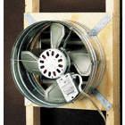Dayton Roof Ventilators Ventilation Equipment And