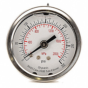"2"" General Purpose Pressure Gauge, 0 to 300 psi"