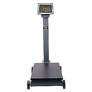 Industrial Digital Scale,1000 lb. Cap.