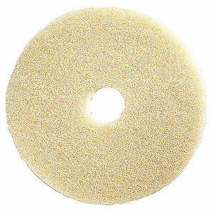 Burnishing Pad,20 In,Beige,PK5