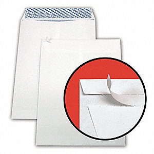 "28 lb.. Wove Security Catalog Envelope, 10"" Height, 13"" Width"
