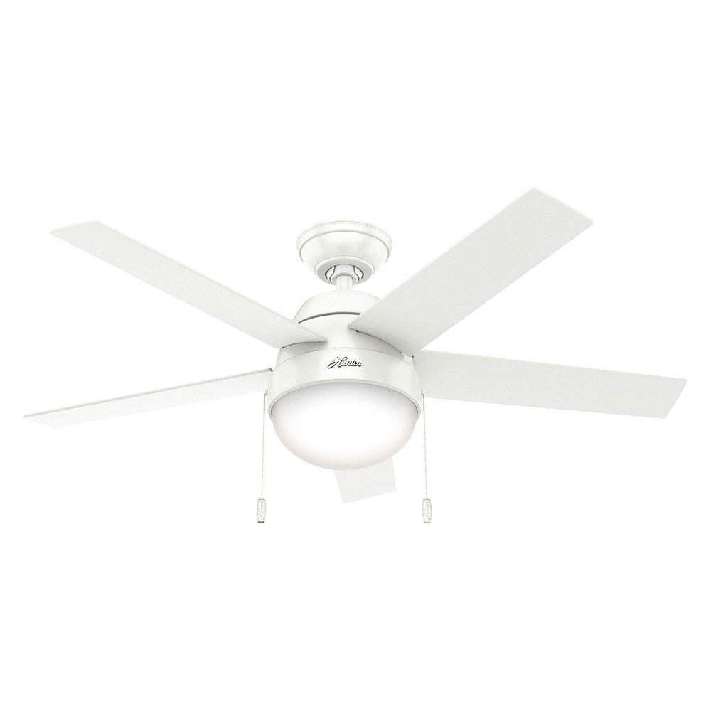 Hunter Decorative Ceiling Fan 46