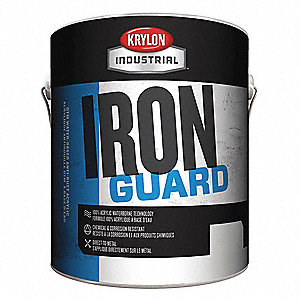 Iron Guard High Gloss Clear Enamel Paint