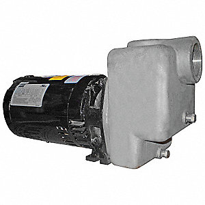 Self Priming Pump,2 HP,316 SS