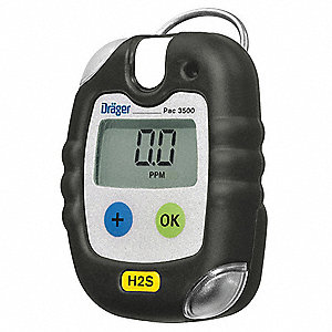 Gas Detector, Hydrogen Sulfide, 100 ppm