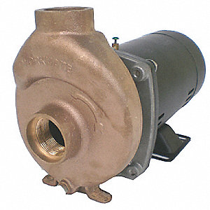 1 HP Pool/Spa Pump, Capacitor Start, 14.5/7.3 Amps