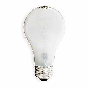 Incandescent Light Bulb,A19,100W