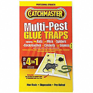Bait Box Glue Trap for Crickets, Roaches, Spiders, 1EA