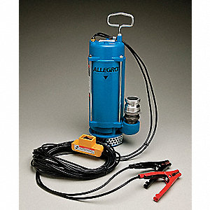 "1/3 HP Utility Pump, 12VDC Voltage, Discharge NPT: 1-1/4"", 30 ft. Cord Length"