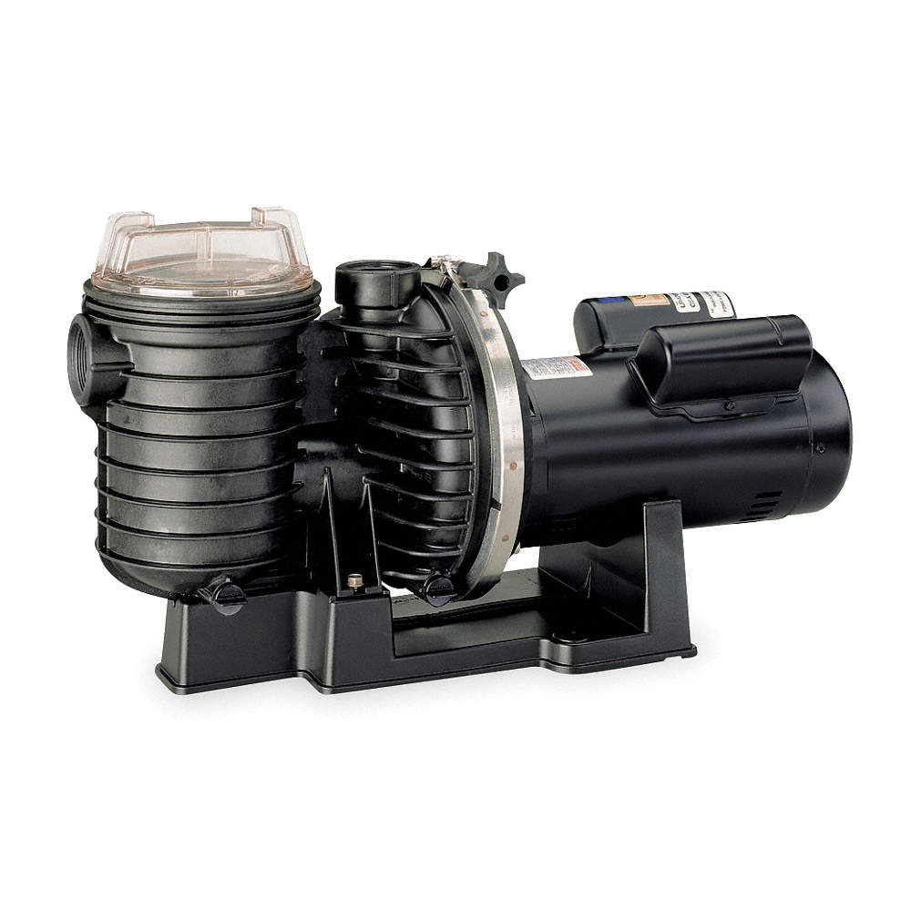 DAYTON 3 HP In-Ground Swimming Pool Pump, —, 11.5/5.8 Amps ...
