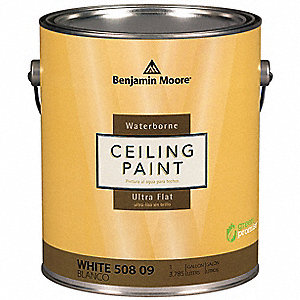 Interior Paint,Flat,1 gal,White