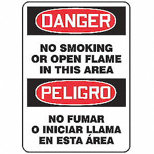 Danger No Smoking Sign,10 x 14In,AL,Text