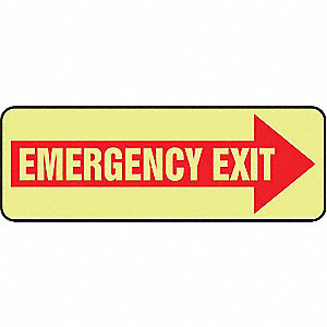 Emergency Exit Sign,3-1/2 x 10 In.,Glow